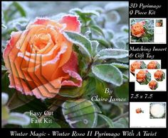 Winter Magic Frosted Rose 2 Pyrimage With A Twist Tag  on Craftsuprint - Add To Basket!