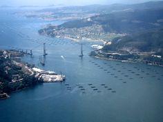 Ria de Vigo. Estreito de Rande coa ponte.