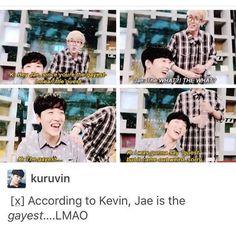 Lol I laughed so hard at this when i saw them on vlive K Pop, Ukiss Kpop, Steven Universe, Shinee, Nct, Moorim School, Funny Kpop Memes, Kdrama Memes, Bts Memes
