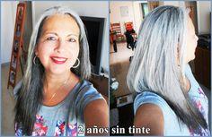 Elvy 24 month dye free - Transition to silver hair Canas #adiosaltinte #bellasconpeloplateado