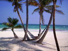 #beach, #пляж, #пальма, #гамак