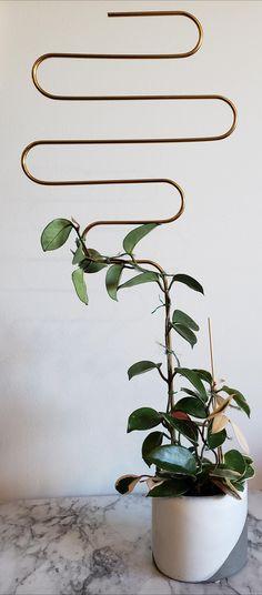 Inside Plants, Cool Plants, House Plants Decor, Plant Decor, Garden Organization, Painting The Roses Red, Diy Trellis, Plants Are Friends, Home Flowers
