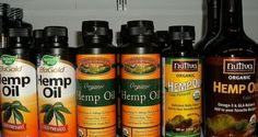 Where to Buy Hemp Oil? Find out All Possibilities - Oilypedia.com