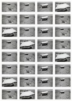 Print that baby! Classic contact sheets from 1960 to now – in pictures