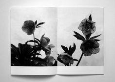 Nursery - Takashi Homma