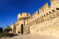 Avignon is one of the few French cities to have preserved all its ancient walls.Battis from the first century,upgraded through the centuries.In 14thC walls of 4km,were flanked by 39 towers & pierced by 7 main gates around the old town.