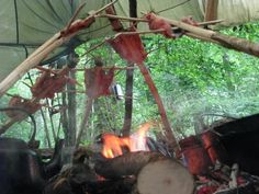 Wilderness Survival Skills Hunter-Gatherer Bushcraft Course Review