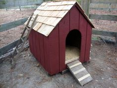 Converting a Dog House for Ducks - Easy DIY Project