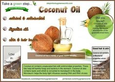 Researchers have discovered that besides coconut oil not increasing body fat, it in fact produces a reduction in white fat stores