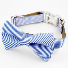 This blue and white stripe bow tie dog collar is oh so dapper! * Heavy weight webbing, reinforced with double stitching for durability * Curved side release buckles for comfort and ease of use * Movab