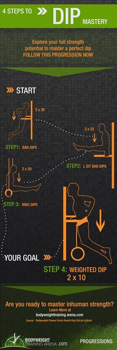Dips Progression - Body Weight Training Arena