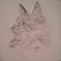 J'ai dessiné mon chat, qui a disparu..