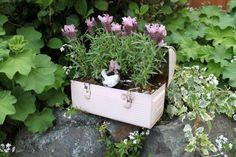 Fishtail Cottage's quaint little flower box