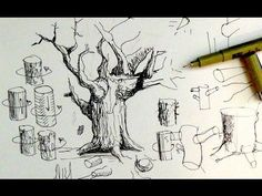 Pen & Ink Drawing Tutorials   How to draw tree trunks & branches - YouTube