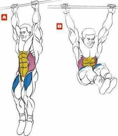 Hanging Leg Raise With Straps 1000+ images ab...
