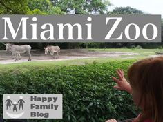 Tips for a fun day at Miami Zoo by Happy Family Blog