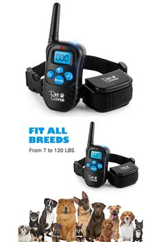 instecho Dog Training Collar, Rainproof Rechargeable Electronic Remote Dog Shock Collar 330 Yards with Beep/Vibrating/Shock Electric E-collar Dog Training Tools, Best Dog Training, Dog Shock Collar, Training Collar, Small Dogs, Best Dogs, Yards, Pet Supplies, Collars