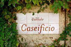 Tenuta Vannulo:  is located in Battipaglia, Campania, Italy , which is full of Mozzarella di Bufala producers