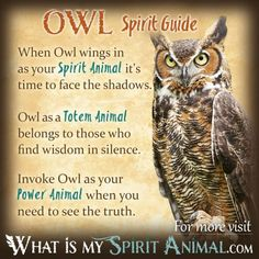 Owl Symbolism & Meaning