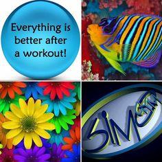 #goodmorning #fitnessmotivation #bodybuildingnatural #ginnasticartistica #kickboxing #circuitorassodante #country #pilates #jeetkunedo #bellydance #caraibico #simogym #followme #likes by simogym_es