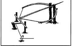 Bow Trap | A bow trap is one of the deadliest traps, both for man as well as animals. #survivallife www.survivallife.com