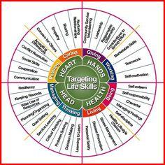 Cool Life Skills Wheel