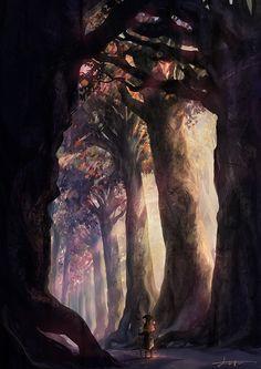 Camino de árboles.