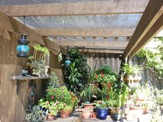 Shade cloth... Shade House, Project Ideas, Projects, Bonsai, Shades, Future, Plants, Home, Log Projects