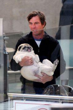 Dennis Quaid and a fat pug? Perfect.
