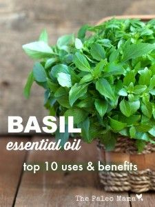 Basil Essential Oil: Top 10 Uses and Benefits | The Paleo Mama