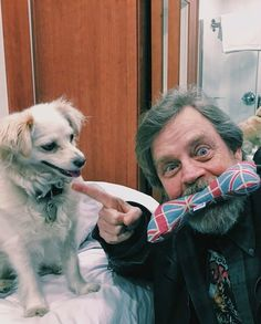 Share your pups interests! See how I bewilder Millie by stealing her favourite Brit-bone chew toy? by hamillhimself Cuadros Star Wars, National Pet Day, Star War 3, Mark Hamill, Luke Skywalker, Guy Names, Good Movies, Famous People, Actors & Actresses
