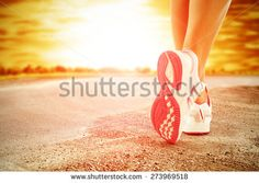 summer sunset and road  - stock photo