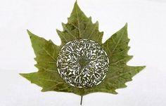 lorenzo duran leaf art