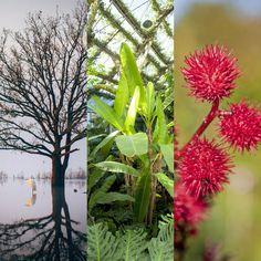 Stages photo Paysage: 3 stages photo paysage - Apprendre la photo de paysage, découvrir en pleine nature la biodiversité des plantes et fleurs, en photo.