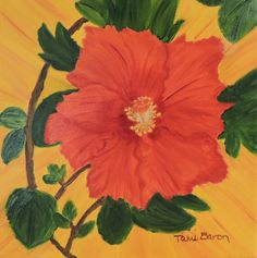 Tami Baron - Mary Jane's Hibiscus - Oil on canvas 12x12
