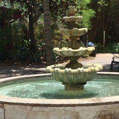 Emma Gilbert, One Drop, Night Skies, Serenity, Beautiful Flowers, Fountain, Backyard, Outdoor Decor, Nature