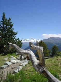 Ballades en Suisse. Haute-Nendaz
