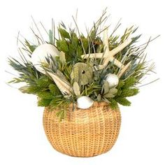 """Assorted dried grass and seashell arrangement in Nantucket bucket.   Product: Preserved floral arrangement Construction Material: Natural grass, wood and seashells Color: Green and tan Dimensions: 11.5"""" H x 10"""" Diameter Note: Keep out of direct sunlight Cleaning and Care: Wipe gently with a dry cloth."""