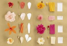How to make crepe paper flowers paper flowers diy crepe paper make all of these flowers with crepe paper o mightylinksfo