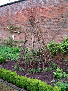 If you have a lot of tall prunings, save them to make a wigwam type support for sweet peas or climbing beans. Clumps of sweet peas have been planted around the base and will soon cover the structure with foliage and scented flowers.