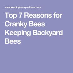 Top 7 Reasons for Cranky Bees Keeping Backyard Bees