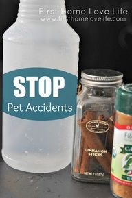 home made pet odor eliminator:  1T Eucalyptus or Cinnamon essential oil  1T Cayenne pepper  2 cups Water