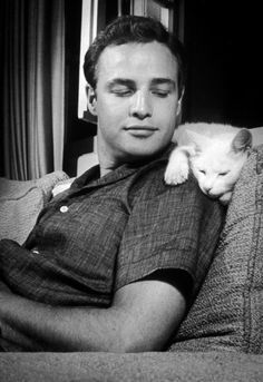 Marlon Brando relaxes with his cat 1955