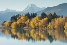 Enough with the snow-capped mountains and mirror-like lakes… New Zealand South Island, Green Earth, Lakes, Scenery, Wanderlust, Snow, Adventure, Mountains, Mirror