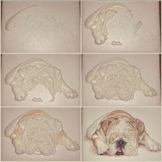 Mezesmanna:  Bull dog pictorial. ....