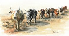 Contemporary South African Artist Erna Wade paints Nguni, wildlife and other African themes in Oils, Acrylic, Mixed Media and Watercolour African Theme, South African Artists, Watercolours, Art Lessons, Watercolor Paintings, Moose Art, Wildlife, Birds, Paper