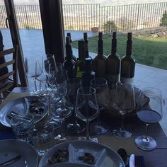 "Just a ""small"" tasting at Gambino Vini here in beautiful Sicily.  wines were amazing a wonderful place to visit!! #vino #wine #etna #winelover #instasicily #igsicilia #vineyard #sicily #winery #vigneto #winerytour #gambinovini #winetasting #winetourism #vinery #cellar #grapewines #whatsicilyis #igcatania #igsicilia #igsicilia #winemakers #ilovewine #wineoclock #grapevines  Just a ""small"" tasting at Gambino Vini here in beautiful Sicily.  wines were amazing a wonderful place to visit!!Just a…"