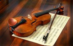 Find the best violin classes in Nagpur. Learn violin basics through detailed violin video lessons and tutorials at X Factor Nagpur. Violin Instrument, Violin Bow, Violin Music, Violin Lessons, Music Lessons, Stradivarius Violin, Guitar Classes, Guinness World, Music Class