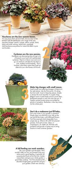 5 big ideas for fall gardening