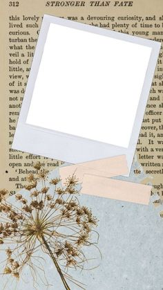 Artsy Background, Flower Background Wallpaper, Framed Wallpaper, Cute Wallpaper Backgrounds, Photo Collage Template, Picture Templates, Aesthetic Pastel Wallpaper, Aesthetic Wallpapers, Polaroid Picture Frame
